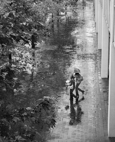 monochrome image of two women wlaking through rain with umbrellas across shiny pavement