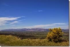 Campiña de Tipperary