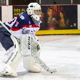 Concentration by Yves Sansoucy - Sports & Fitness Ice hockey ( hockey, goalie, white, pads, ice, stick, mask )