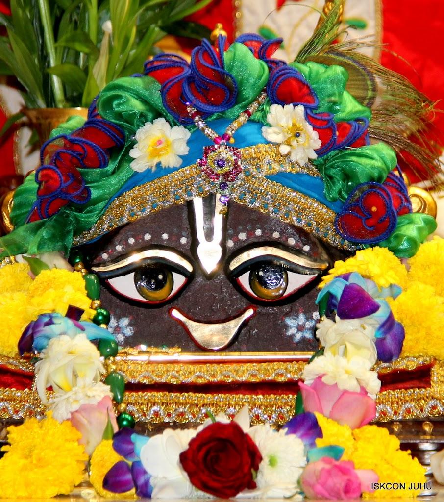 ISKCON Juhu Sringar Deity Darshan 09 Feb 16 (9)