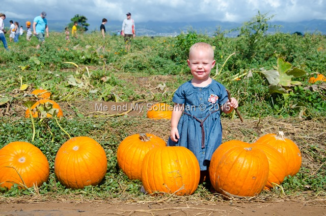 Me and My SoldierMan: Baby G's First Pumpkin Patch