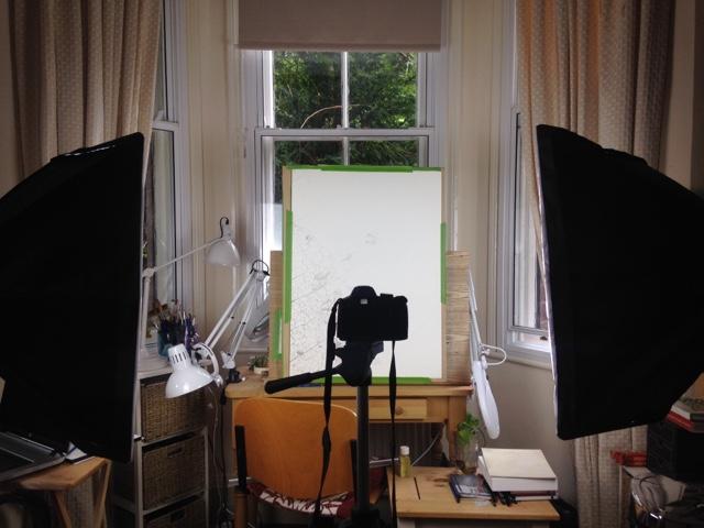 photographing botanical artwork