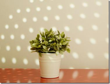 Tips Trik Membuat Siluet Foto Indah Hanya Dengan Perkakas Dapur