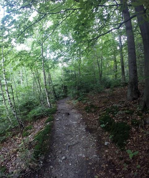 single trail na Jahodnej, pri ceste