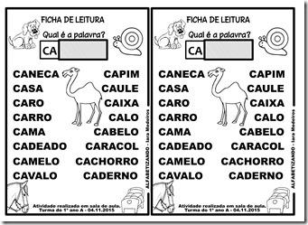 FICHA DO CA