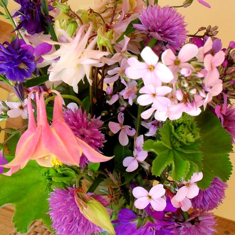 garden posy - columbine, sweet rocket and chive flowers