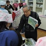 2016012829高井戸 茶種.jpg