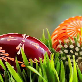 Happy Easter by Michaela Firešová - Public Holidays Easter ( easter, eggs, grass, decoration,  )
