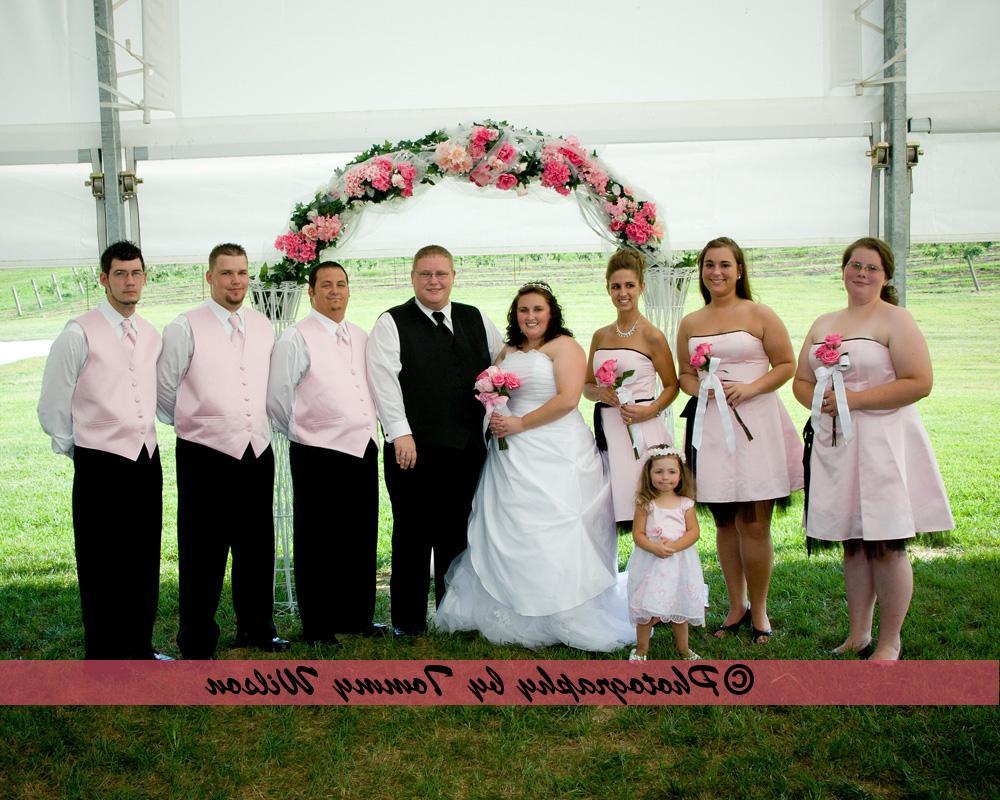 Vineyard Weddings Photo