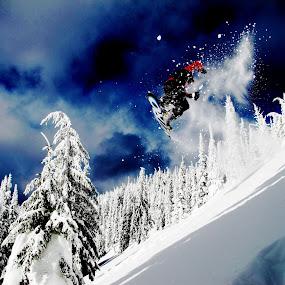 Blue Bird by Michael Nania - Sports & Fitness Snow Sports ( snowboard, bluebird, winter, blue, snow, whitefish, big mountain )