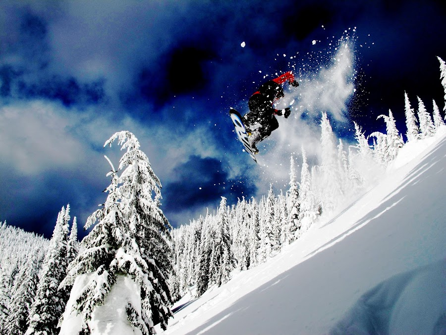 Blue Bird by Michael Nania - Sports & Fitness Snow Sports ( snowboard, bluebird, winter, blue, snow, whitefish, big mountain )