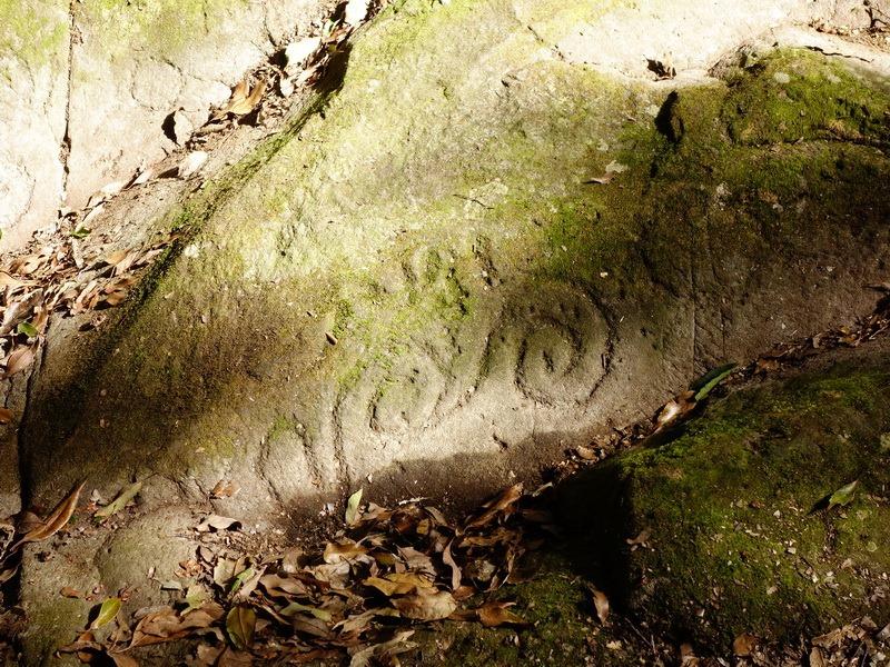 2014_0101-0105 萬山神石、萬山岩雕順訪萬頭蘭山_0735