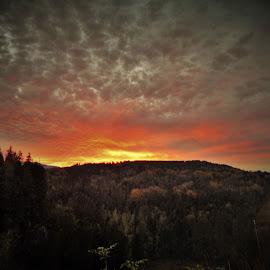 SUNSET by Lavonne Ripley - Landscapes Sunsets & Sunrises