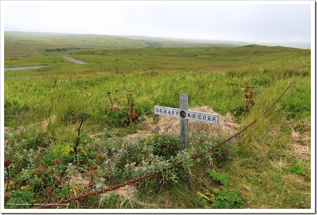 150907_Adak_pet_cemetery1_WM
