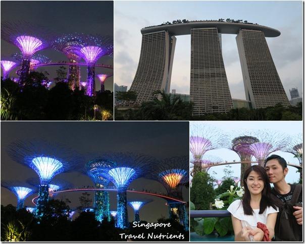 新加坡超級樹燈光秀 (45)