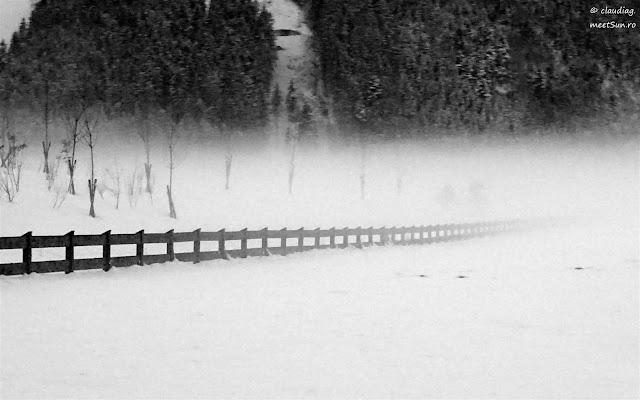 Austria-Zillertal-4034-rw.jpg