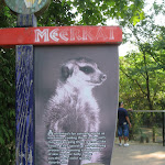The Meerkat sign at the Nashville Zoo 09032011