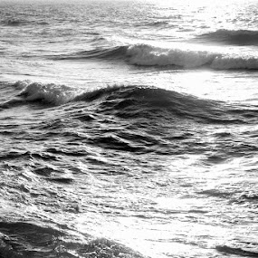 See light by Libin Michael - Landscapes Waterscapes ( water, see, black and white, sunset, waves, bw )