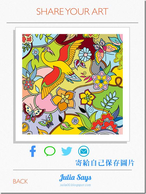 colorfy (2)