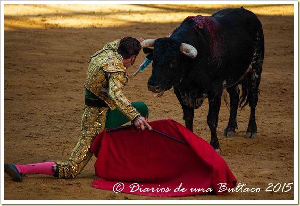 Toros Feria 2015-9890