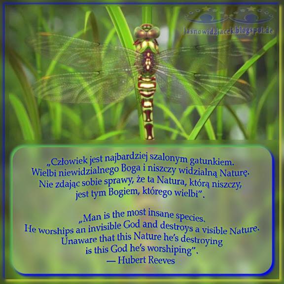Człowiek Jest Najbardziej Szalonym Gatunkiem Wielbi Niewidzialnego Boga i Niszczy Widzialną Nature - Hubert Reeves