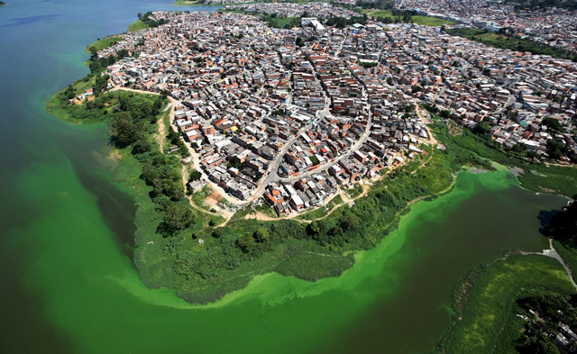 An aerial view shows illegally built slums on the border of the polluted water of Billings reservoir in São Paulo, 12 February 2015. According to local media, the Billings dam supplies 1.6 million people in greater São Paulo, and the state government wants to treat the water to be adequate for human consumption, adding to the complexity of securing a safe water supply during the drought. the bright green  color is caused by an algae bloom that is fed by pollution and sewage. Photo: Reuters