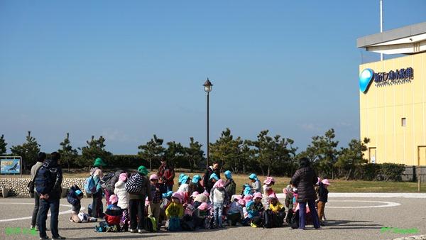 新江之岛水族馆