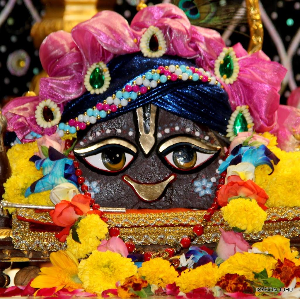 ISKCON Juhu Sringar Deity Darshan 20 Jan 16 (8)