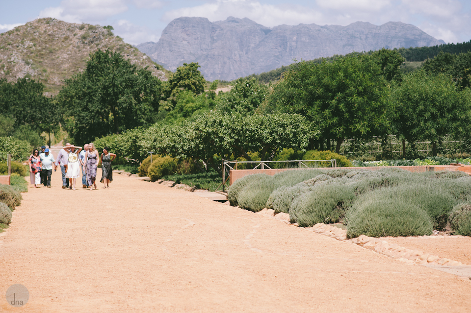 Paige and Ty wedding Babylonstoren South Africa shot by dna photographers 17.jpg