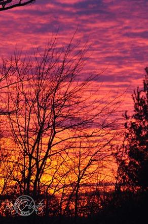 VA-Sunrise
