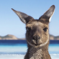 Australia Tourism