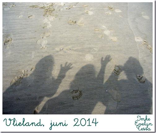 vlieland-2014