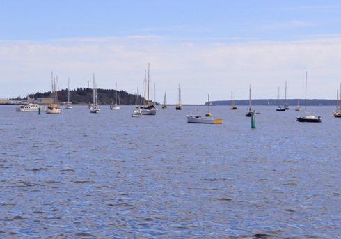 Nova Scotia 22