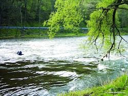 Bočský jez je rozvalený a kamenitý, sjízdný u pravé strany. Také přenášení je vhodnější po pravém břehu.