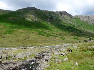Stonethwaite Fell from Stake Beck.