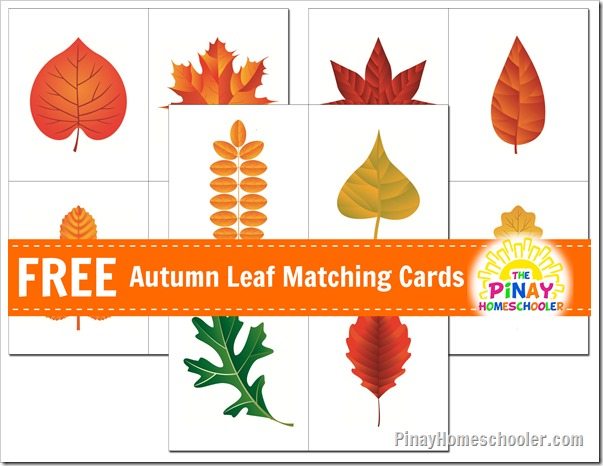 FREE Autumn Leaves Matching Cards and Learn  Play Link Up  The