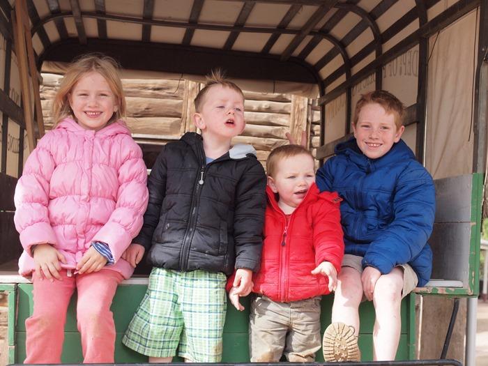 virtù - my mob on a buggy (close up)