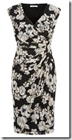 Kaliko Floral Printed Lace Dress
