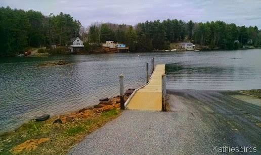 4-30-15 Sawyer Park dock