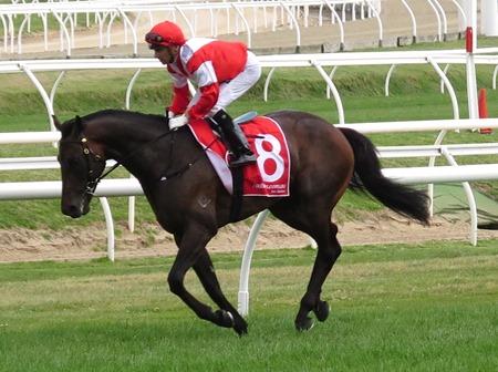 race 6_mongolian khan 3