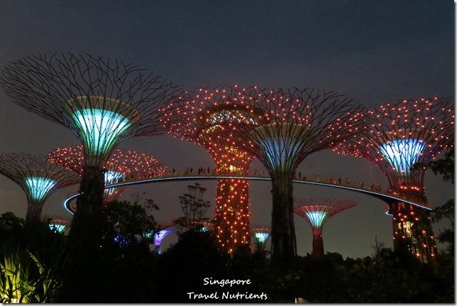 新加坡超級樹燈光秀 (29)