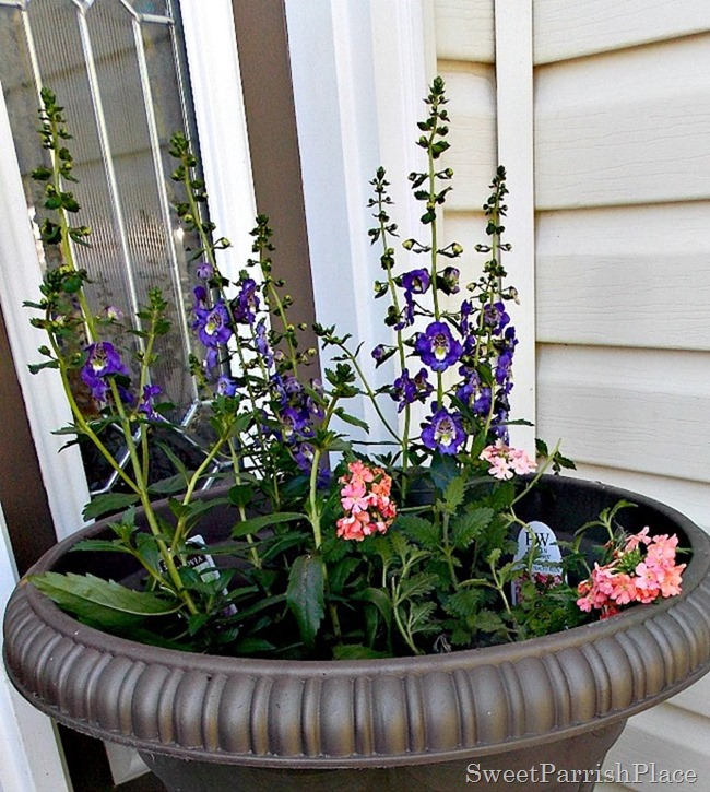 Flower Container1