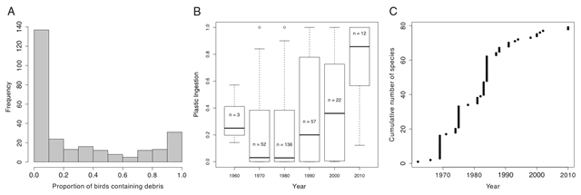 Plastic ingestion by seabirds as reported in the literature (1962–2012). (A) Frequency of individuals with plastic fragments in their digestive system per species–study combination. (B) Proportion of individuals in each species–study combination having plastic in their digestive system with time. Plot shows median and quartiles, with bars extending to 1.5 times the interquartile range. (C) Date of first discovery of plastic ingestion for seabird species across all species identified in the literature review. Graphic: Wilcox, et al., 2015 / PNAS