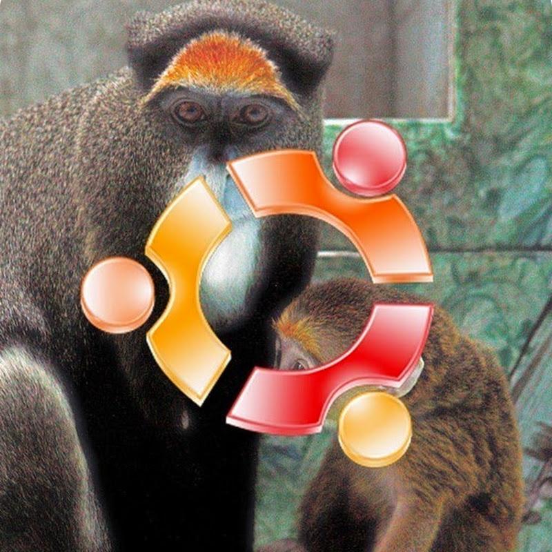 """Ubuntu 15.04 """"Vivid Vervet"""" in perfetto orario."""