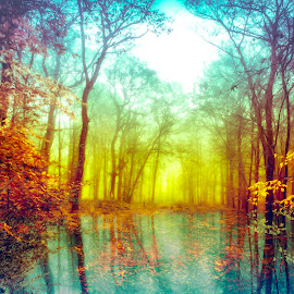 Mi amor by Anne-Cecile Pflieger - Digital Art Places ( reflection, beautiful, forest, leaf, leaves, annececilegraphic, red, tree, nature, autumn, blue, color, fall, trees )