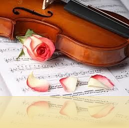 violin 2_opt