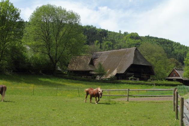 The Black Forest Farmhouses at Vogtsbauernhof, Germany