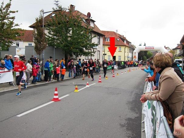 Halbmarathon_Bottwartal-Marathon_4a