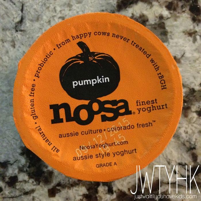 090315-Pumpkin-Yogurt