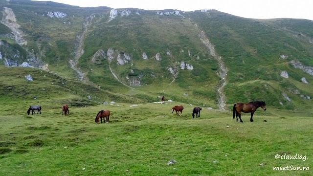 Bucegi-Morar-Clincea-34.jpg